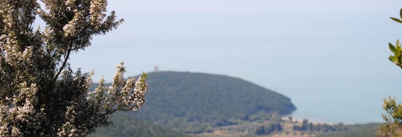 Torre Alta / Cala di Forno A cavallo nella leggenda