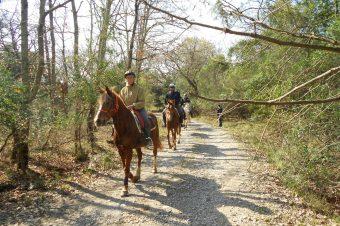 Spaccasasso – Tra gli oliveti, lungo le antiche vie di accesso