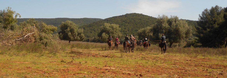 Campo del Gavazzi: riding with wild animals