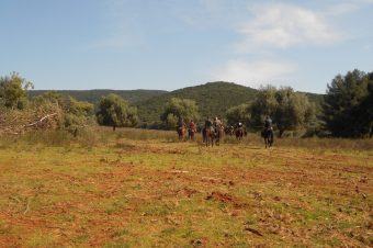Campo del Gavazzi: riding with wild animals