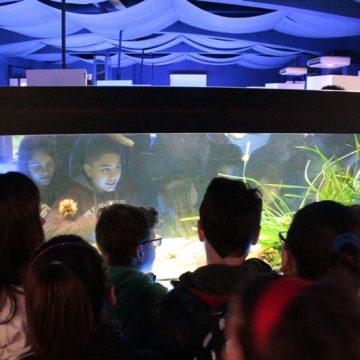 Notti all'Acquario di Talamone: venerdì 20 luglio e 17 agosto