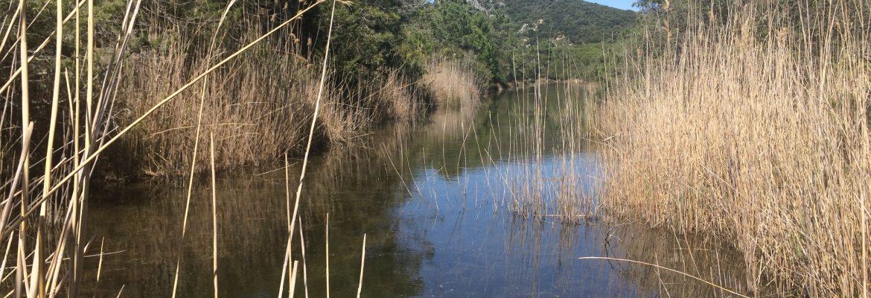 Igersgrosseto visita il Parco della Maremma