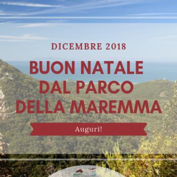 Chiusura del Centro visite del Parco della Maremma il 25 dicembre