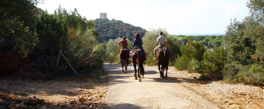 25-26 Marzo: Raduno equestre nel Parco della Maremma