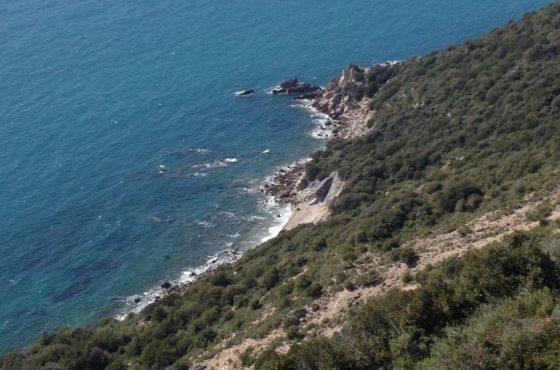 10-11 Novembre: trekking al Parco della Maremma