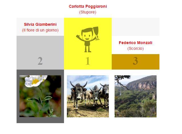 I vincitori del concorso fotografico Primavera 2017