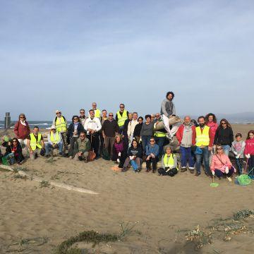 Il Parco della Maremma e i volontari hanno ripulito la spiaggia da Principina a Mare a Bocca d'Ombrone