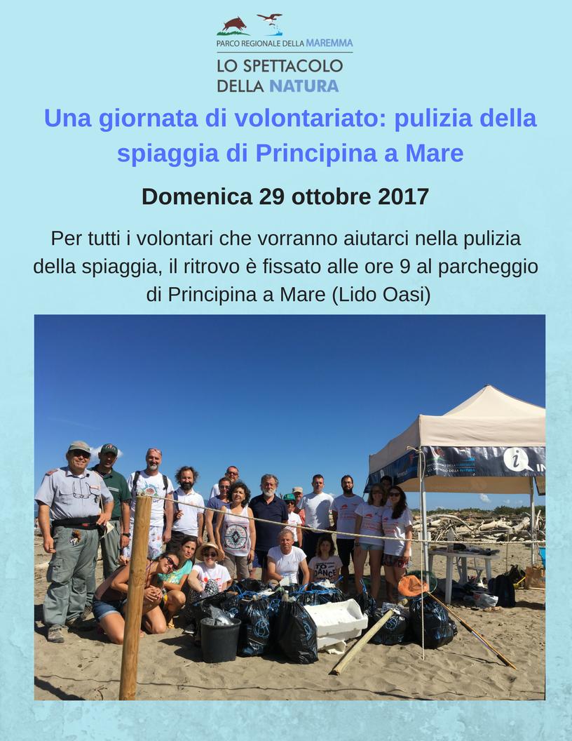 Domenica 29 ottobre: pulizia della spiaggia di Principina a Mare