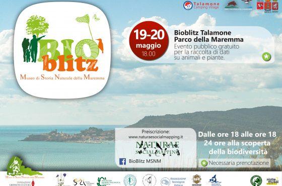 May 19-20: Bioblitz at the Maremma Park