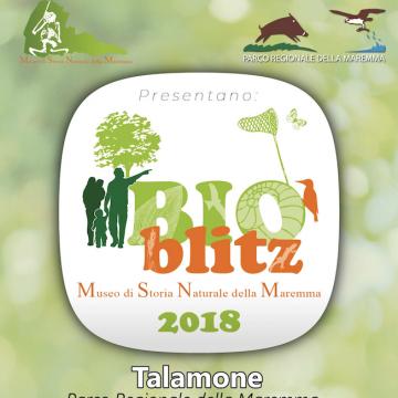 19-20 Maggio: Bioblitz al Parco della Maremma