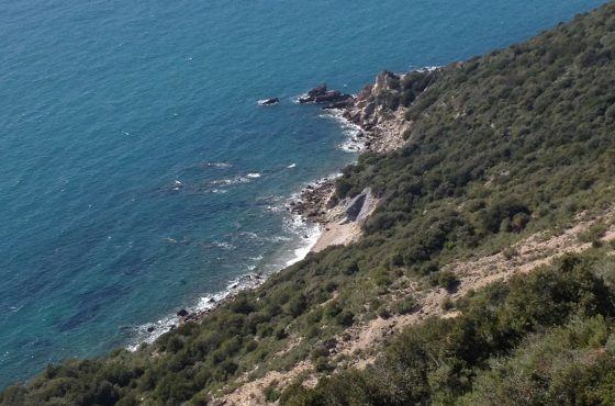 Save the date: October 14th excursion of the Maremma Park