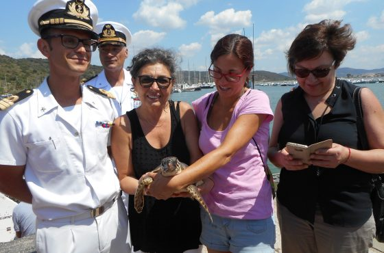 La tartaruga T. Fortuna torna libera in mare