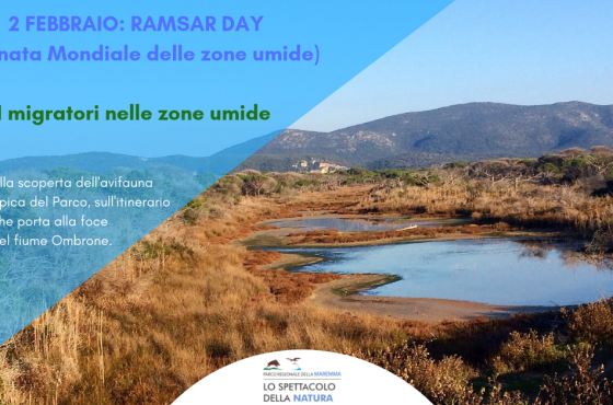 2 febbraio: Ramsar Day al Parco della Maremma