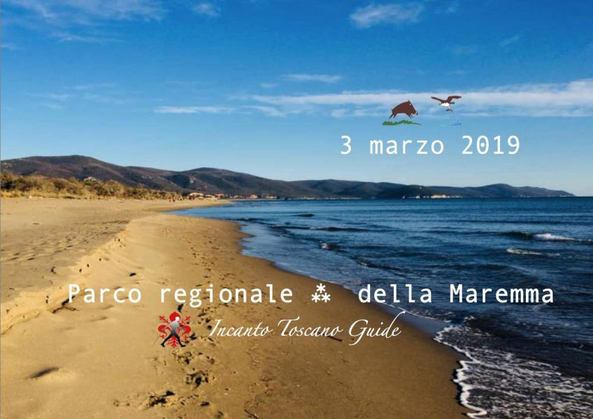 The Nordic Walking events at the Parco della Maremma are back.