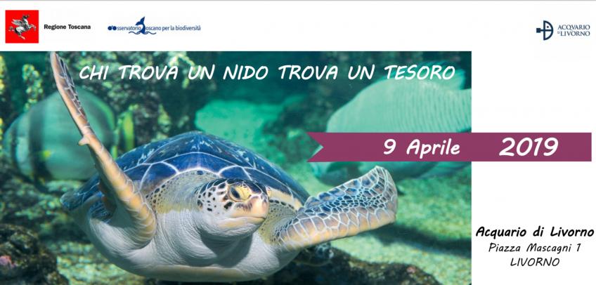 """""""Chi trova un nido, trova un tesoro"""": incontro all'Acquario di Livorno"""