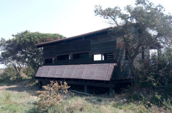 Inaugurazione del ripristino Capanno di avvistamento al Parco della Maremma
