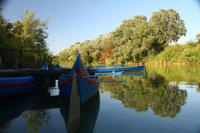 Escursioni in canoa Estate 2020