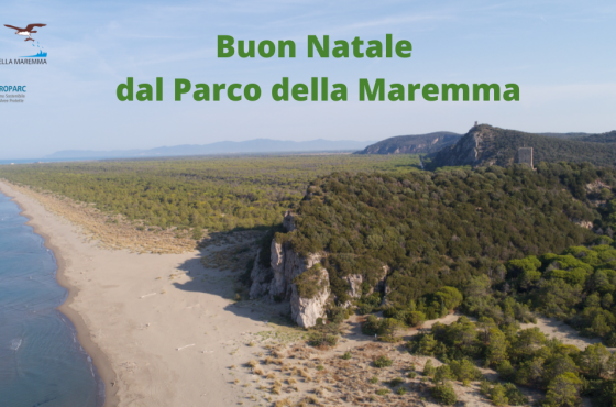 Closing of the Visitor Center of the Maremma Park on December 25th
