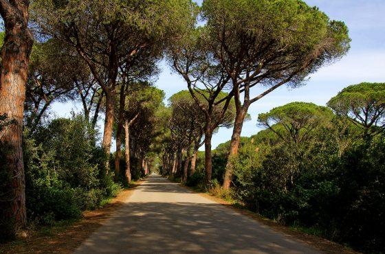 Regione Toscana: itinerario naturalistico toscano