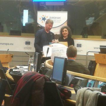 Cerimonia conferimento CETS: guarda la diretta del 2 dicembre