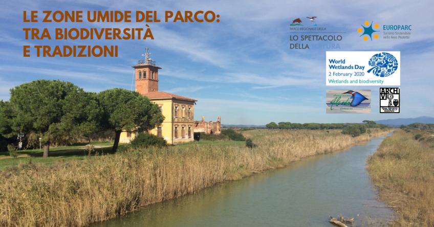 Le zone umide del Parco: tra biodiversità e tradizioni
