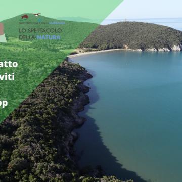 Iscriviti alla lista Whatsapp del Parco della Maremma e resta aggiornato sulle novità
