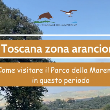 Toscana zona arancione dal 14 febbraio 2021