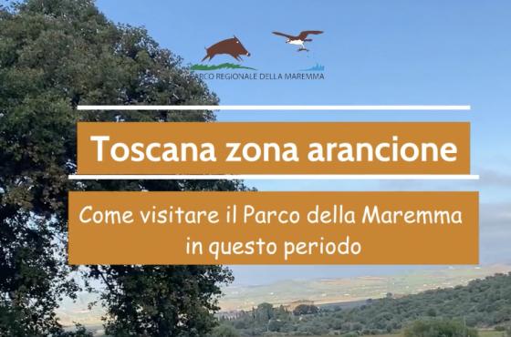 Toscana in zona arancione dal 12 aprile: cosa cambia per visitare il Parco della Maremma