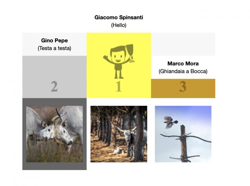 Vincitori concorso fotografico Inverno 2020 – 2021